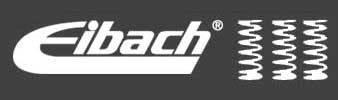Eibach Race Springs